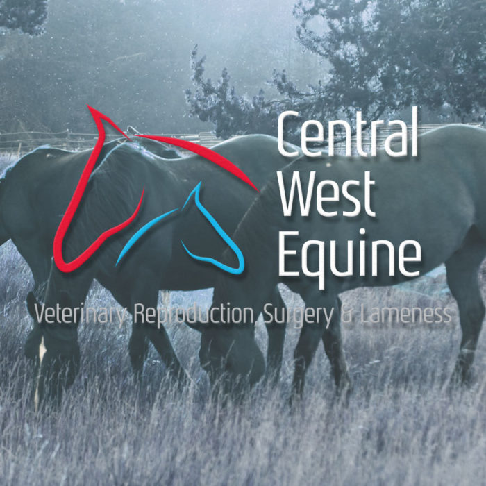 Central West Equine