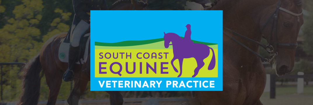 South Coast Equine Veterinary